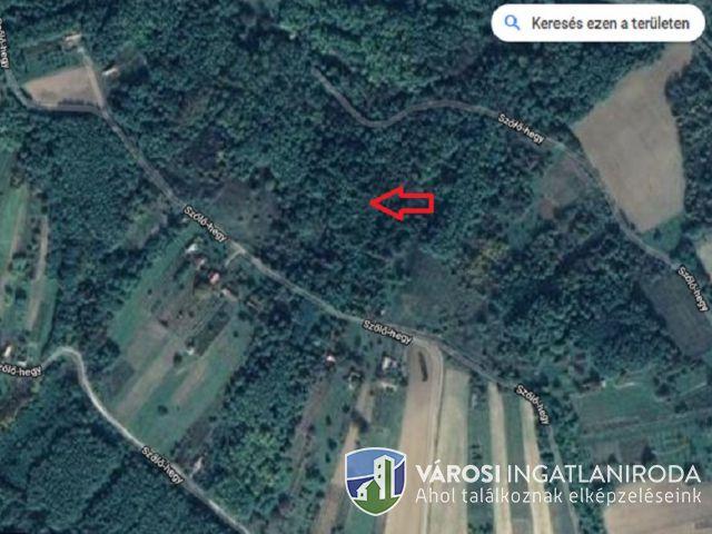 Zala-völgye téréségében mezőgazdasági ingatlan eladó!