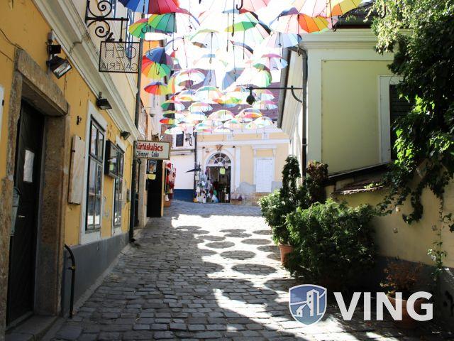 Egyedi üzlethelyiség kiadó Szentendre belvárosában